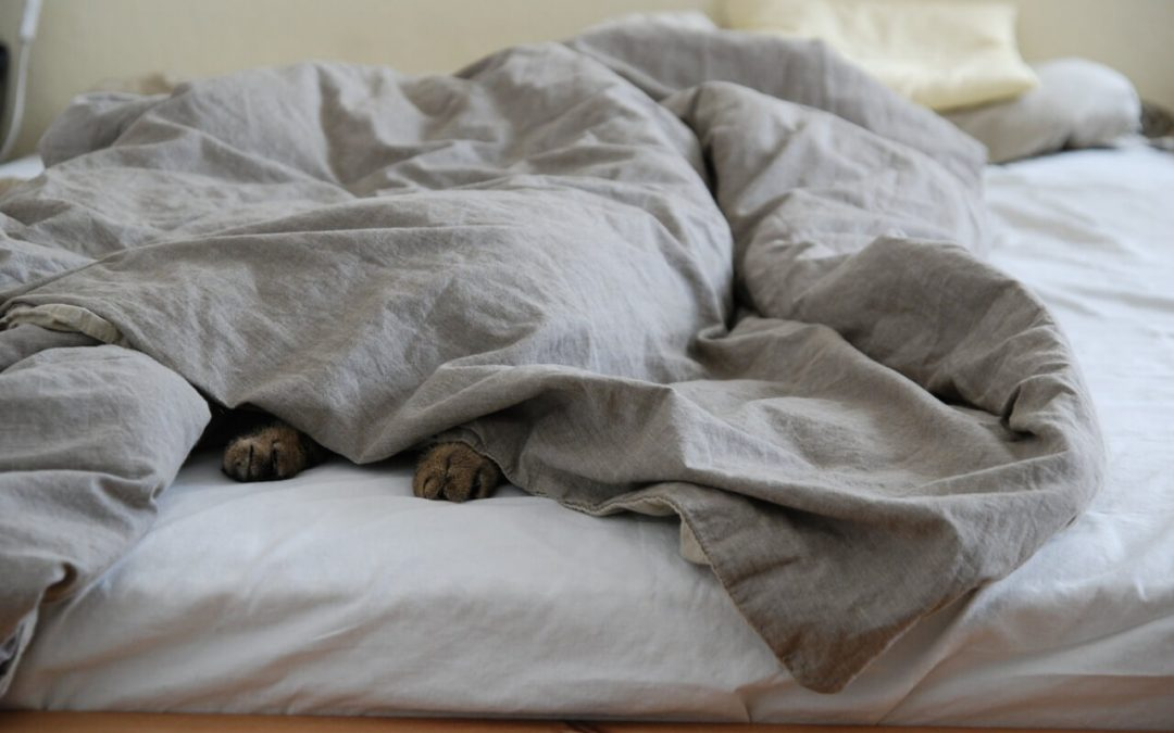 Reducing Insomnia and Anxiety with a Weighted Blanket